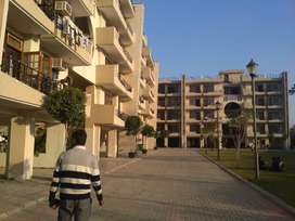 Reasonable Price 3BHK Flat in Occupied Omaxe City Bahadurgarh