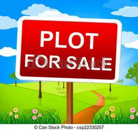 Ready to Move in Plot Near Ambala Chandigarh Highway with 80% loan