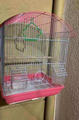 Bird cage 1 month old