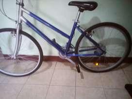 Sepeda polygon Bekaa