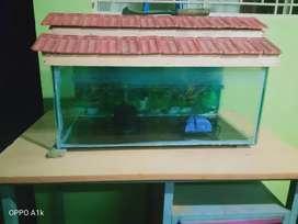 Fish tank  rs