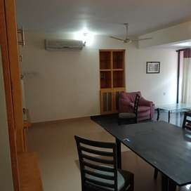 3 bhk fully furnished apartments for rent