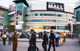 New job opening in Vishal mega Mart shopping mall in fresher candidate