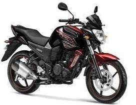 Fzs black and red colour