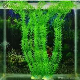 Fish aquarium artificial plant. Natural plant
