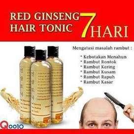 obat penumbuh rambut botak & rontok red ginseng