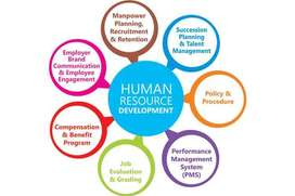 Having Vacancy In HR Department