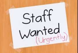 Female office staff with basic accounts in Avadi