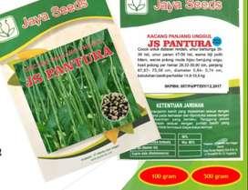 Benih Bibit Kacang Panjang Pantura Jaya Seeds