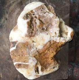 Batu suiseki siberian husky