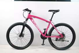 Sturdy 21 GEAR SHIMANO TZ NEW CYCLE AVAILABLE. Hybrid
