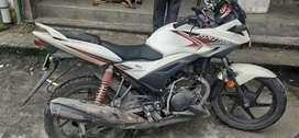 Ignator bike