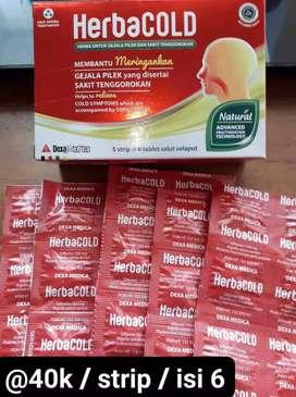 Herbal Sinusitis Tinnitus Flu Pilek Radang