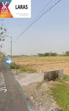 Tanah Sawah Daerah Pergudangan & Industri Wonoayu (CA 1.635)