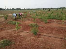 HIGHWAY FACING LOW COST FARM RESORTS PLOTS FOR SALE