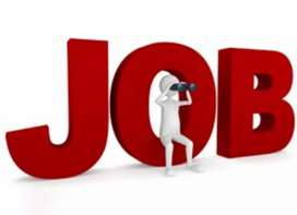 Front/Back office Executive for freshers in Bank Process
