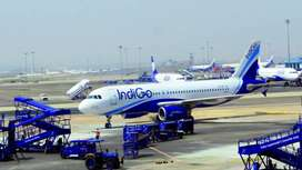 Jobs required for ground staff Airport.