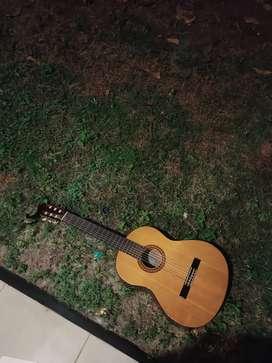 Gitar clasic Yamaha c315
