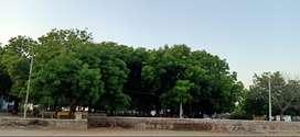 ભાવનગર સિટી થી નજદીક આધેવાડા ગામ ના સર્વે નંબર માં આવેલ જમીન sale