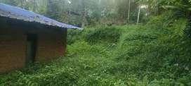 10 സെന്റ് plot. Bike പോകാനുള്ള വഴി. കരിപ്പൂർ, kavumoola