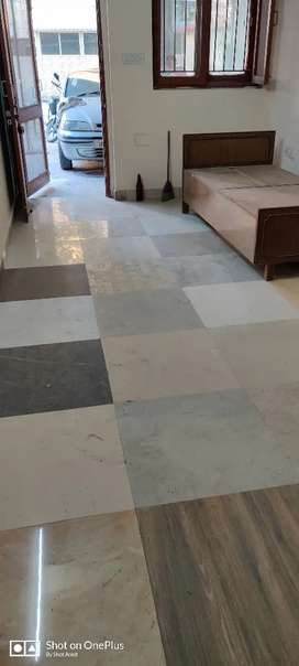 Independent flat for rent in Noida sector 37 near botanical metro