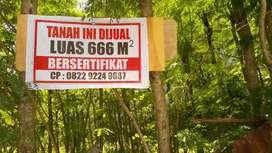 Dijual sebidang tanah,