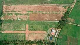 Villa Plots for sale in Sarkari Uttanahalli