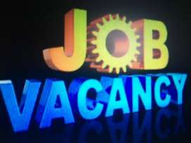 urgent Staff Required in our Company