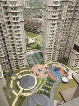 3bhk for rent in noida extension