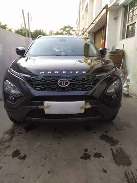 Harrier xz Top model dark edition 2019 with sunroof  extra accessories