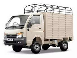 Van delivery executives for courier van