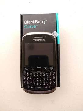 UDAIPUR - NEW BLACKBERRY CURVE 9320 MODEL
