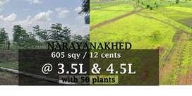 farming land 12 cents/5 guntas/605 sqy