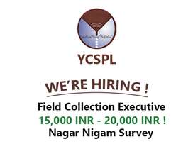 Collection executives- accommodation free