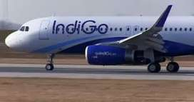 REQUIRMENT IN INDIGO AIRLINE COMPANY FOR FRESHERS / EXPERIENCE BOTH