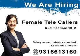 Urgently Required Telecallers for back office in Zirkpaur
