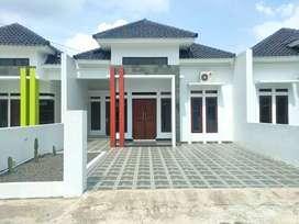 rumah asri minimalis mewah