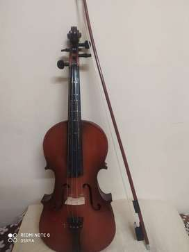 Indian Violin 3 years old