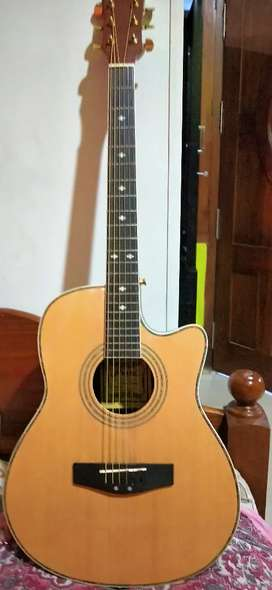 Hertz acoustic guitar 4002  ENA with equilizer