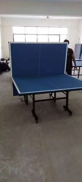 Table tennis t t table