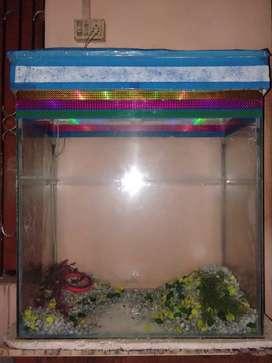 Aquarium in good condition