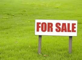 MIG plot for sale at nice location kalindipuram