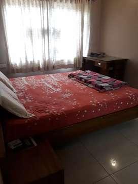 Fully furnished 2bhk flat near hampankatta
