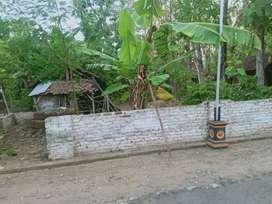 Jual Tanah Pribadi Murah di Gundik, Kab. Ponorogo