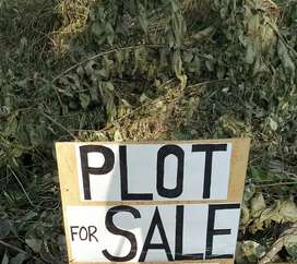 Clear title plot for sale