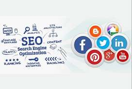 Our Hospital needs SEO and SMO persons.