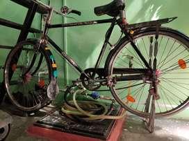 Hercules cycle