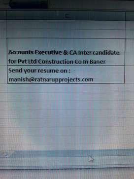 CA Inter and accounts executive