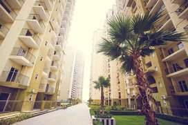 @Great infrastructure% 1364sqft 3BHK/ at TRIDENT EMBASSY