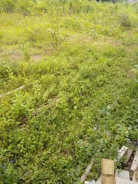 Land sale moranhat natunnagor near commerce college road